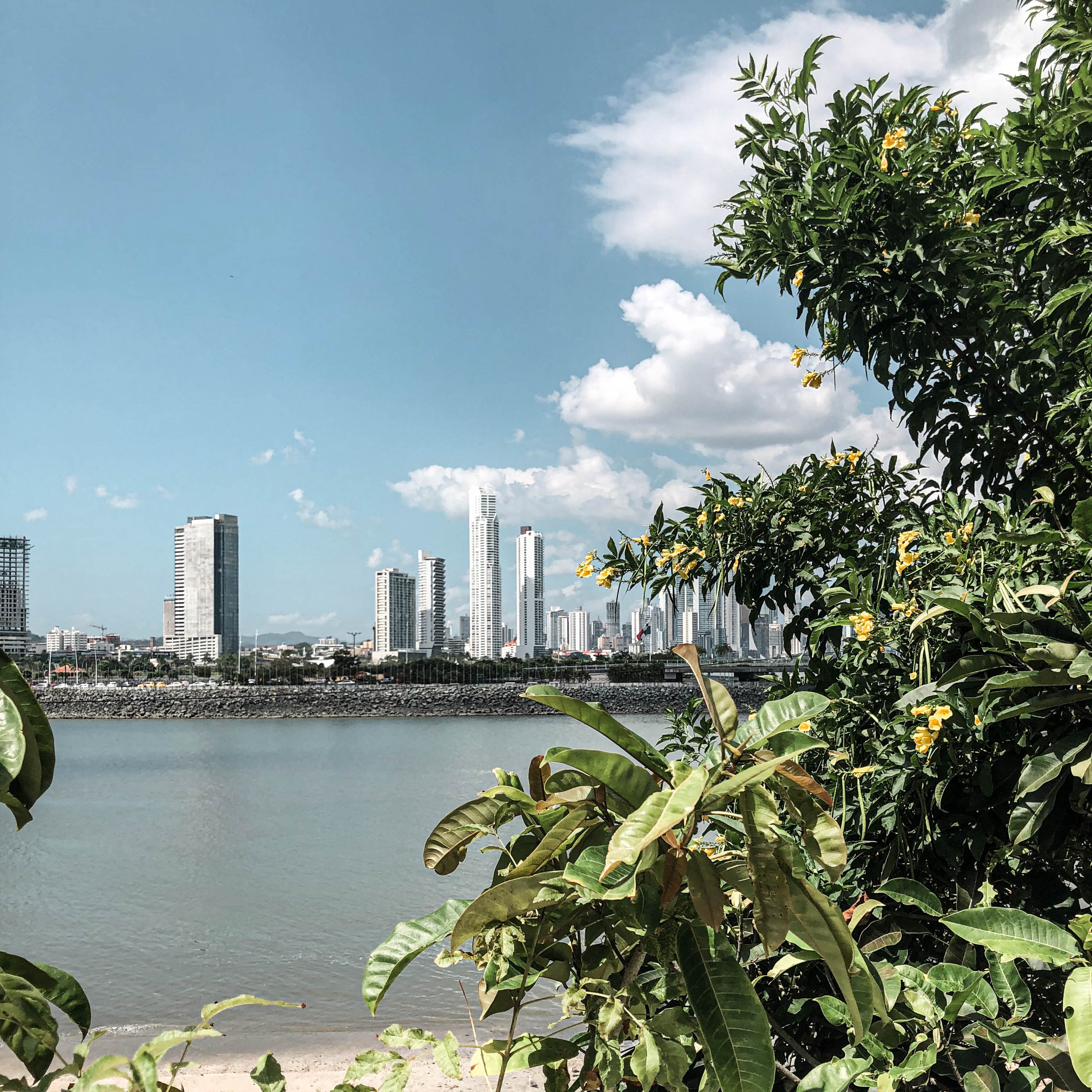 Casco Viejo - View of Panama City Skyline